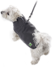 Pawz - Pawz Coat with Built-in Harness Size 10
