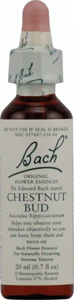 Bach Flower Essences - Bach Flower Essences Flower Essence Chestnut Bud 20 ml