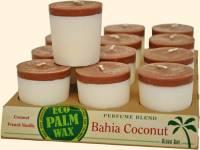 Home Products - Candles - Aloha Bay - Aloha Bay Candle Votives Eco- Unscented Green