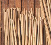 "Garden - BIH Collection - BIH Collection Bamboo Stakes 8' x 1"" (25 Pack)"