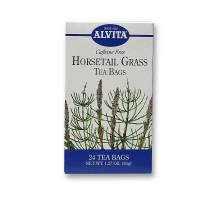 Grocery - Alvita Teas - Alvita Teas Horsetail Grass Tea Organic 24 Bags